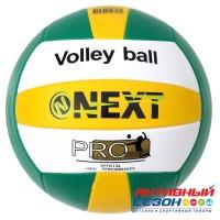 Мяч волейбольный Next (247928)