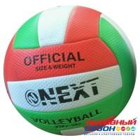 Мяч волейбольный Next (265699)